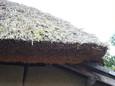 落柿舎のわらぶき屋根