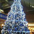 なんばCITYのクリスマスツリー